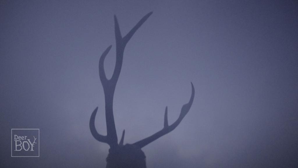 Deer Boy di Katarzyna Gondek